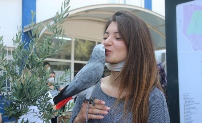 İzmir'de sosyal mesafeli YKS başladı