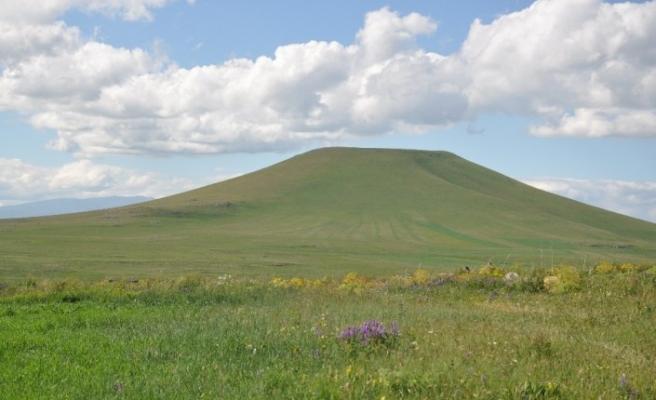 Kars'ta Kavılca buğdayı dönemi başladı