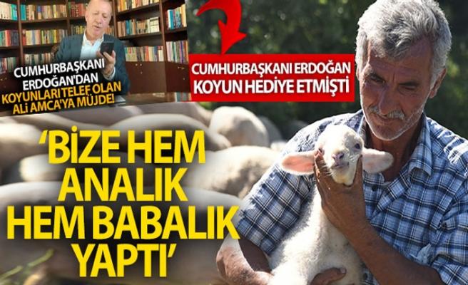 Koyunları telef olan Çelikel çiftinden Cumhurbaşkanına teşekkür