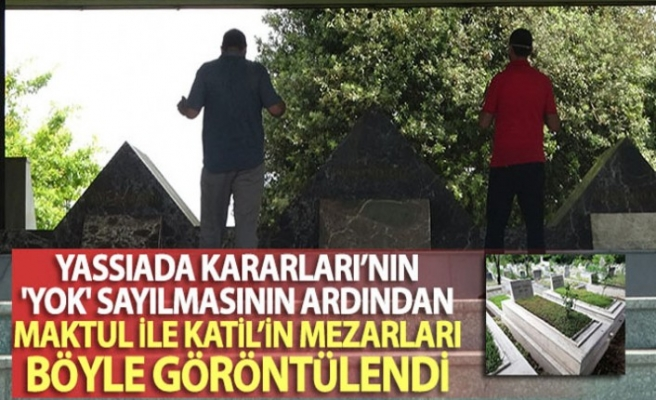 """Yassıada Kararları'nın """"yok"""" sayılmasının ardından maktul ile katil'in mezarları böyle görüntülendi"""