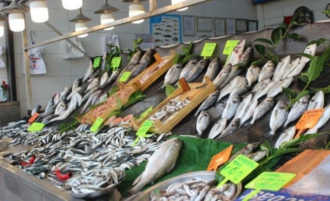 Balık az olunca fiyatlar cep yakıyor