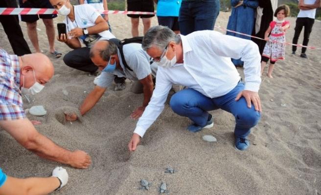 Çıralı sahilinde carettaların yuva açılışı yapıldı