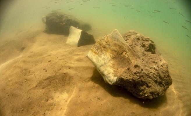 Dünyada ilk kez kara canlısının fosili Yamula Barajı'nda su altında bulundu