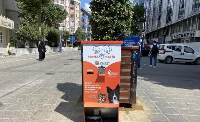 Esenler'de sokak hayvanları mamamatik ile besleniyor