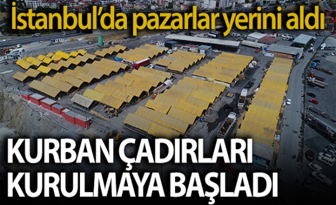 İstanbul'da kurbanlıklar çadırları doldurmaya başladı