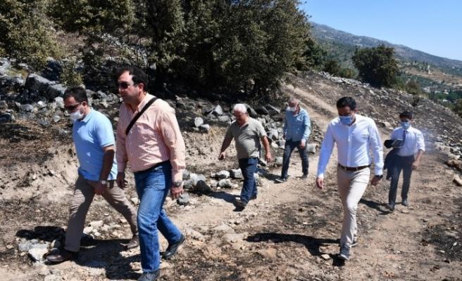 Aydın İl Kültür Müdürü Tuncer'den yangın sonrası Priene'de inceleme