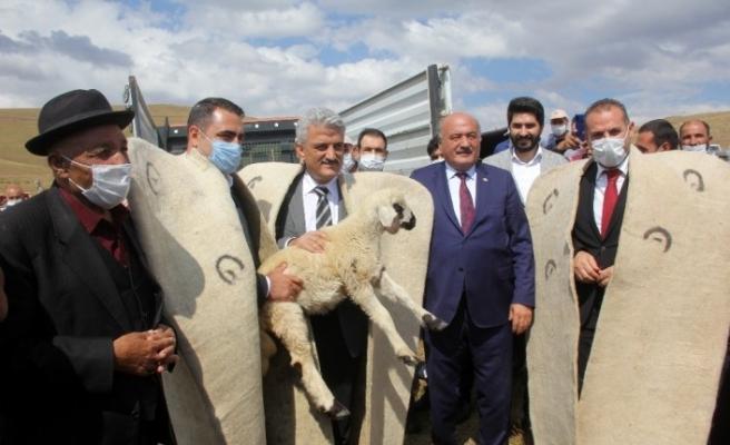Erzincan'da koç katım şenliği düzenlendi