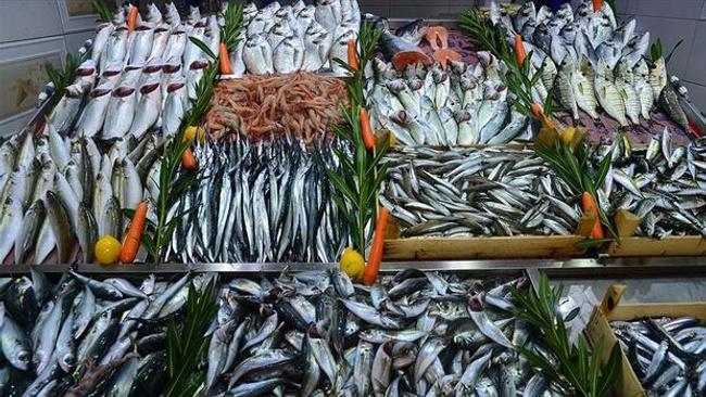 İstanbullu balıkçılar