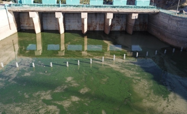 Rengi değişen Koçköprü barajının suyu vatandaşları tedirgin etti