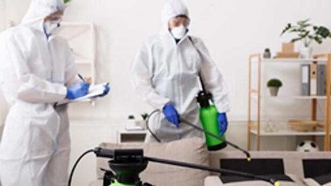 Tur Assist iş yerinizi ve evinizi virüslerden temizliyor