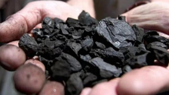 'Kara elmas' 8 ayda 155 milyon lira gelir sağladı