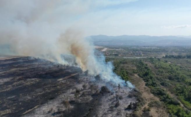 Kızılırmak Deltası'nda çıkan yangınla ilgili soruşturma sürüyor