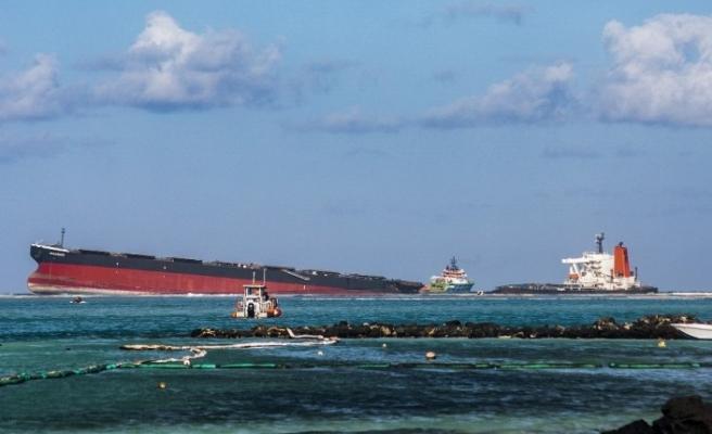 Mauritius'taki petrol faciası ekosistemi tehdit ediyor: 17 yunus ölü bulundu