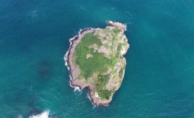 """Ordu'nun kuş cenneti: """"Hoynat Adası"""""""