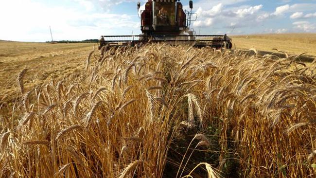 Tarım arazileri 10 yıl süreyle kiraya verilecek