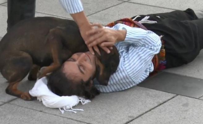Yaralı rolü yapan oyuncuya şefkat gösteren köpeği belediye sahiplendi