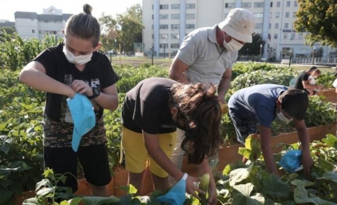 Yeni nesil tarımla tanışıyor
