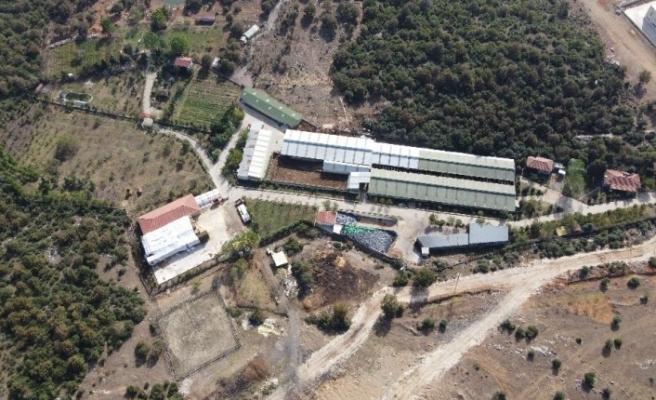 15 kaçak yapının tespit edildiği Türkkan'ın çiftliğinde aylardır yıkım yapılamıyor