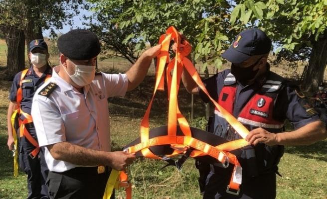 3 yılda 20 kişi ağaçtan düşerek ölünce jandarma önlem projesi geliştirdi