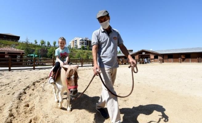 """Altınköy Açık Hava Müzesi içerisinde açılan """"At Çiftliği""""ne yoğun ilgi"""