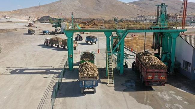 Elbistan'da 50 bin ton şeker üretilmesi hedefleniyor