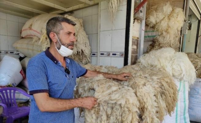 Eskiden fiyatı tereyağı ile yarışan koyun yünleri elde kaldı