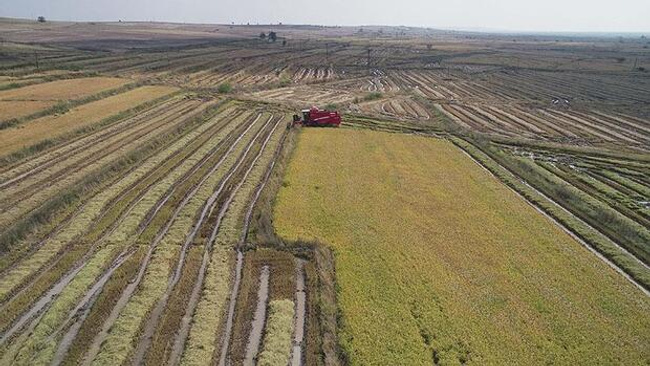 Kırsal alanda refah, katma değerli tarımsal ürünlerle yükselecek