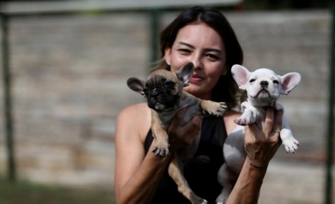 (Özel) Evcil hayvanlar salgında en yakın arkadaş oldu