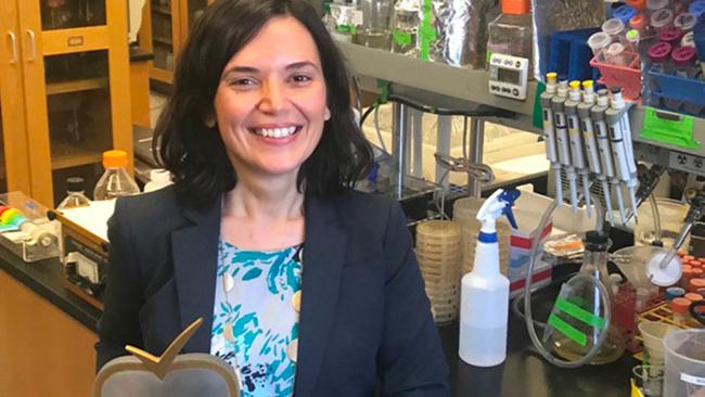 Sabri Ülker Bilim Ödülü sahibini buldu