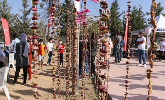Şanlıurfa'da şire şenliği düzenlendi