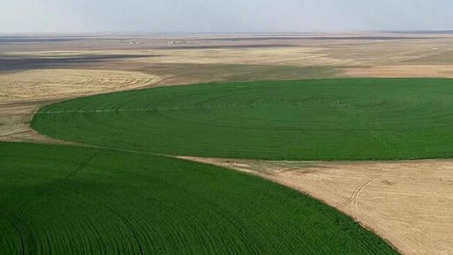 Arazi toplulaştırma seferberliği hızlandırılıyor