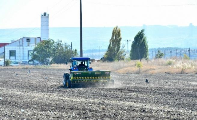 Atatürk Orman Çiftliği'nde yeniden tarım yapılmaya başlandı