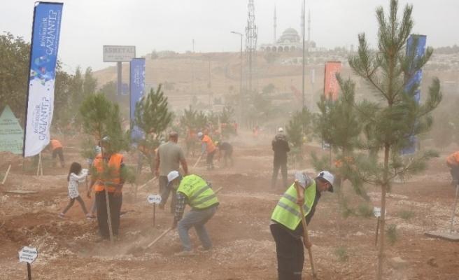 Habeş Kanyonu ile Fırat Nehri arasında 27 milyon fidan dikilecek