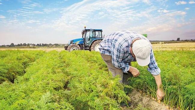 Sözleşmeli tarımda elektronik ürün senedi