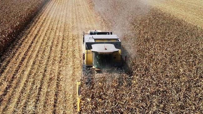 Tarım ÜFE  ekimde arttı
