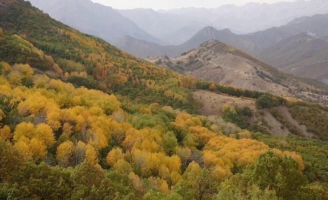 Tunceli'de sonbahar güzelliği renk cümbüşü sunuyor
