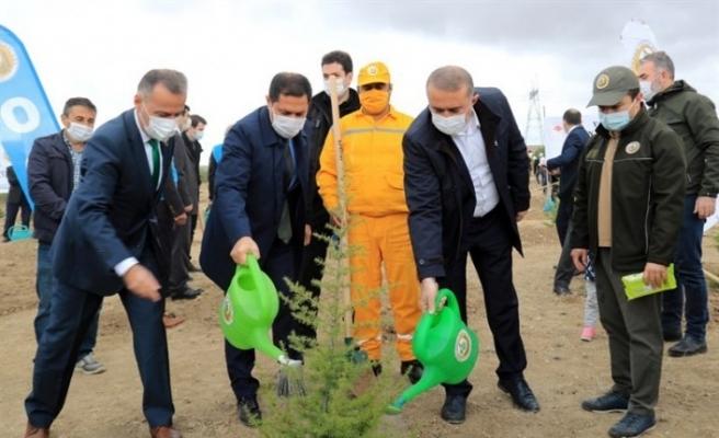 """Vali Masatlı: """"Yüzlerce fidanı toprakla buluşturmamız, PKK'lı hainlere verilebilecek en güzel cevap"""""""
