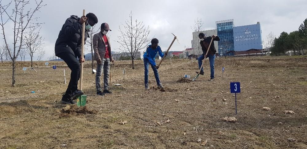 Bu bahçelerde ekimi öğrencisinden rektörüne herkes yapıyor
